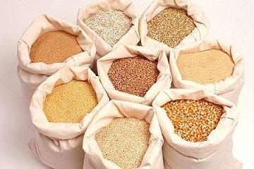 export grains and oilseeds