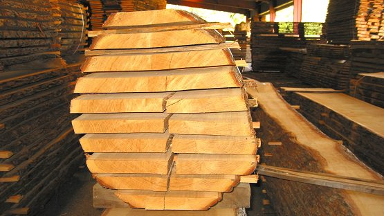 export lumber from Belarus